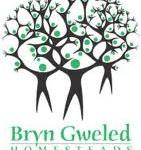 Bryn Gweled
